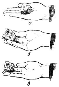 Кормление собаки с руки