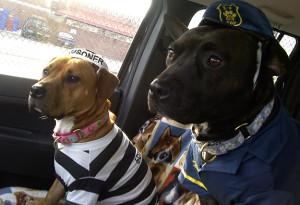 Полицейский и заключенный
